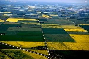 farmland-Alberta